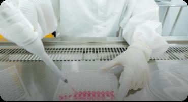 In vitro Assay Development